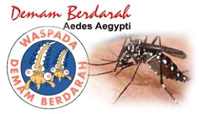 obat demam berdarah dengue