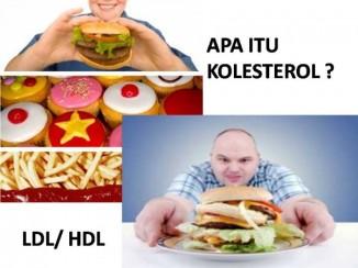 obat penurun kolesterol tinggi
